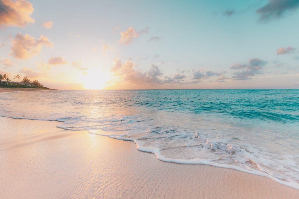plasticfree-beach-clean