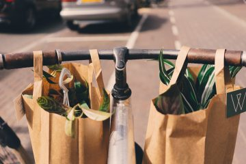 plasticfree-grocery bags-paper